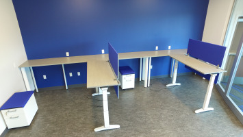 Blue walls with light brown height-adjustable desks and modesty panels (or partitions) for individual workspaces.