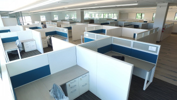 Many cubicles in blues and white with desks, chairs and filing cabinets.